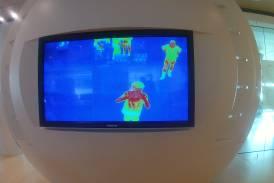 Galleria Gita di fine anno: una metafora viva