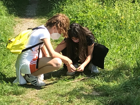 Parco Ovest, la visita naturalistica con Legambiente